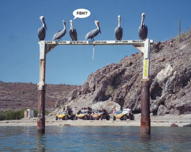 November 1999 Baja 1000 Trip With The Manx Dune Buggy Club